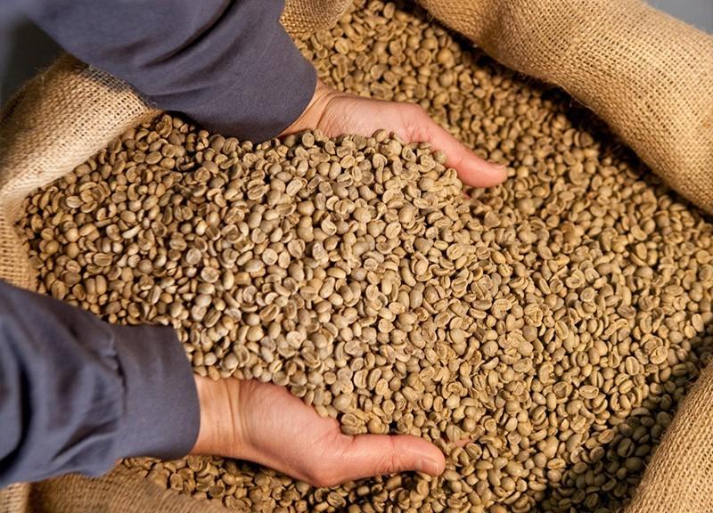 La produzione di Caffè Trucillo